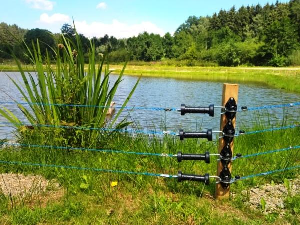 Fischottermanagementplan