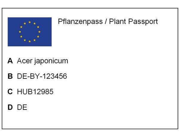 Faqs Pflanzenpass Neu Pflanzenschutzdienst 1